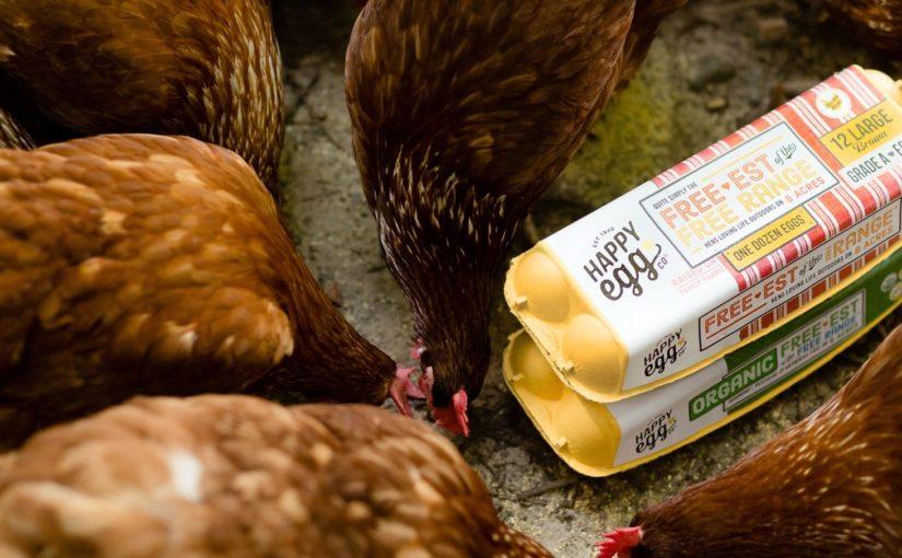 FoodChain Magazine | The Happy Egg Company Issue 146 - Happy Egg Co